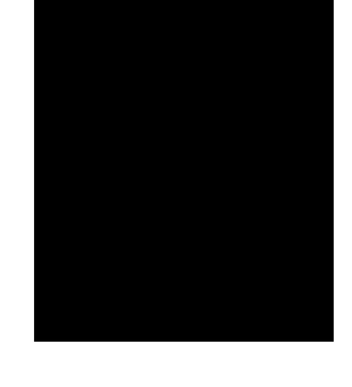 Logo FOLKLORE-NB